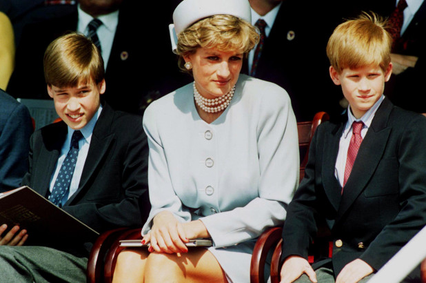 Prince William And Prince Harry Likely To Be At Odds Over Diana Photo, Royal Observer - SurgeZirc UK